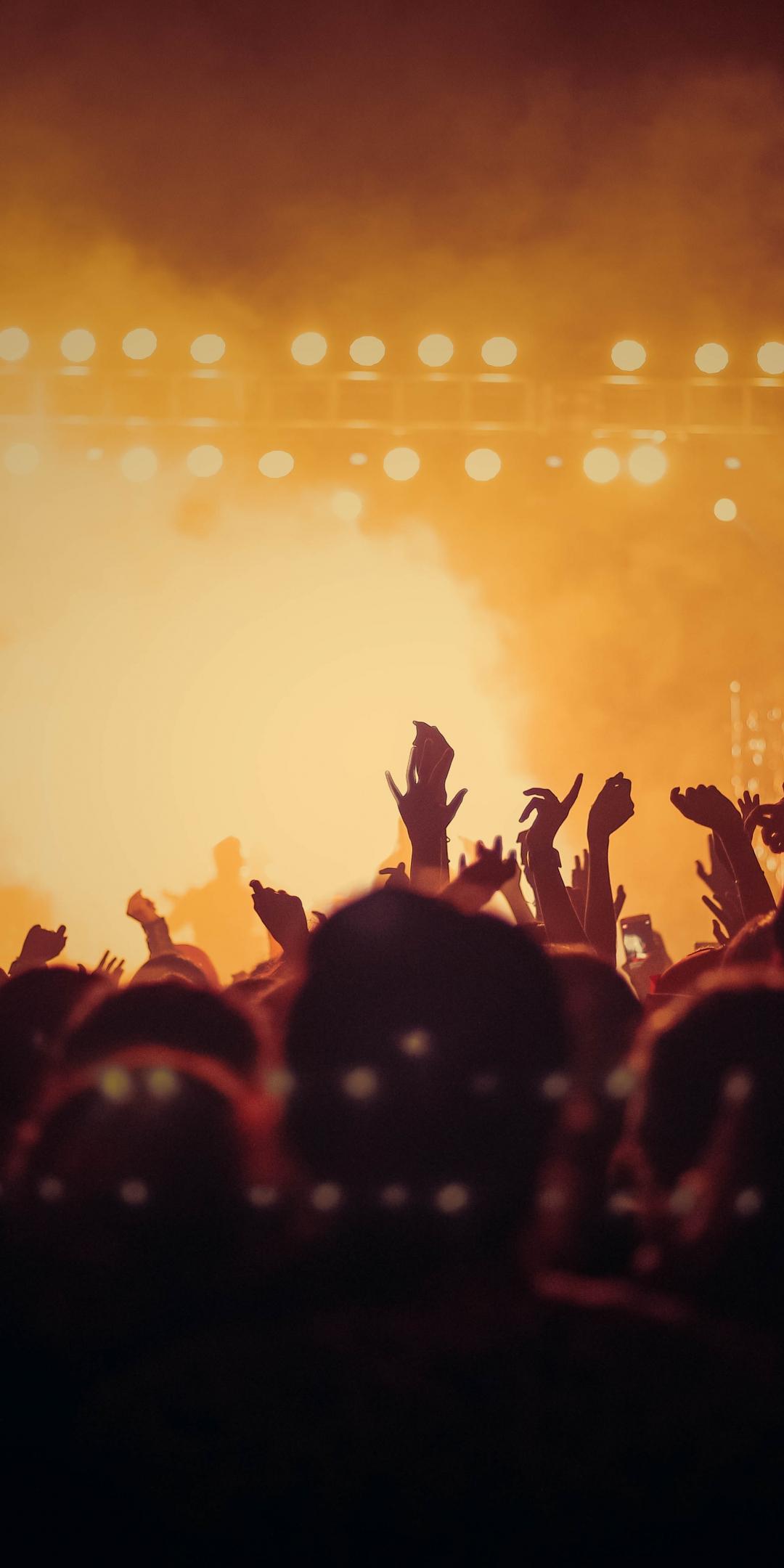 Concert, hands up, joy, dark, party, 1080x2160 wallpaper