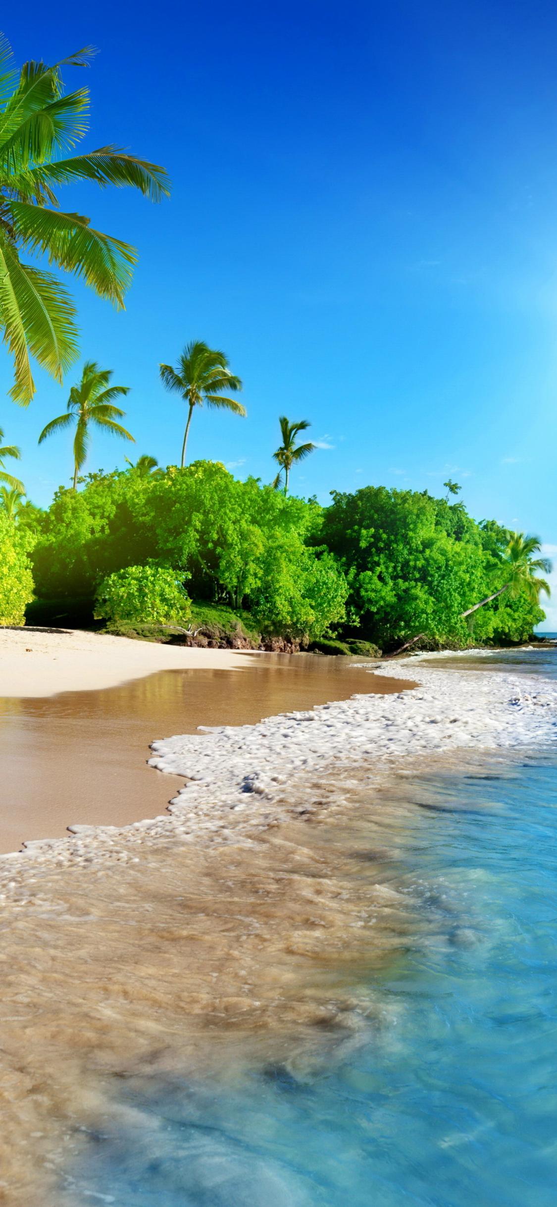 Download 1125x2436 Wallpaper Tropical Beach Sea Calm Sunny Day