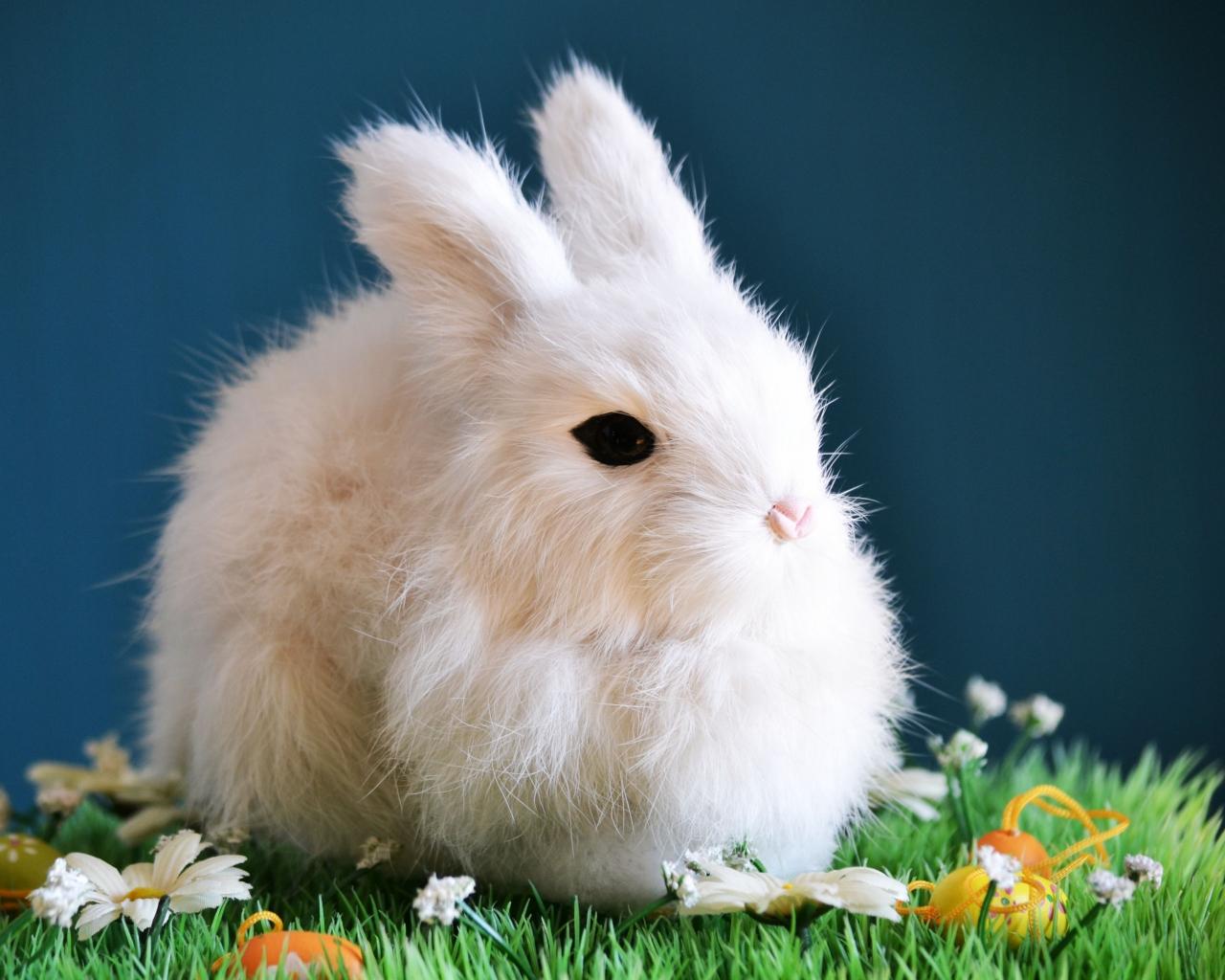 Anonymous большой черный кролик гонялся за маленьким белым кроликом, укусил его,на ладони маленький кролик лежал укушенный и из раны вылезла черная масса, я пыталась пальцем эту массу вернуть назад поалаллч снилась что мы зашли в поляну и там были белые кролики я подошла к ним и один из них зубами вципился за мою ногу а я боялась что он может укусить и оттолкнула его..