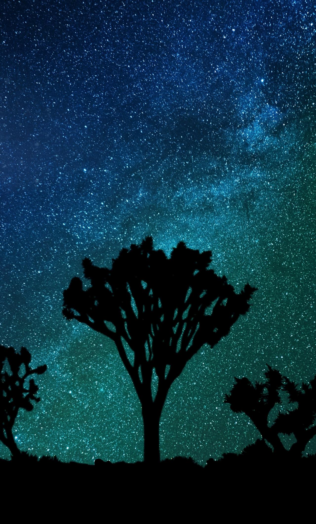Download 1280x2120 Wallpaper Blue Green Sky Milky Way Joshua Tree Night Iphone 6 Plus 1280x2120 Hd Image Background 1336