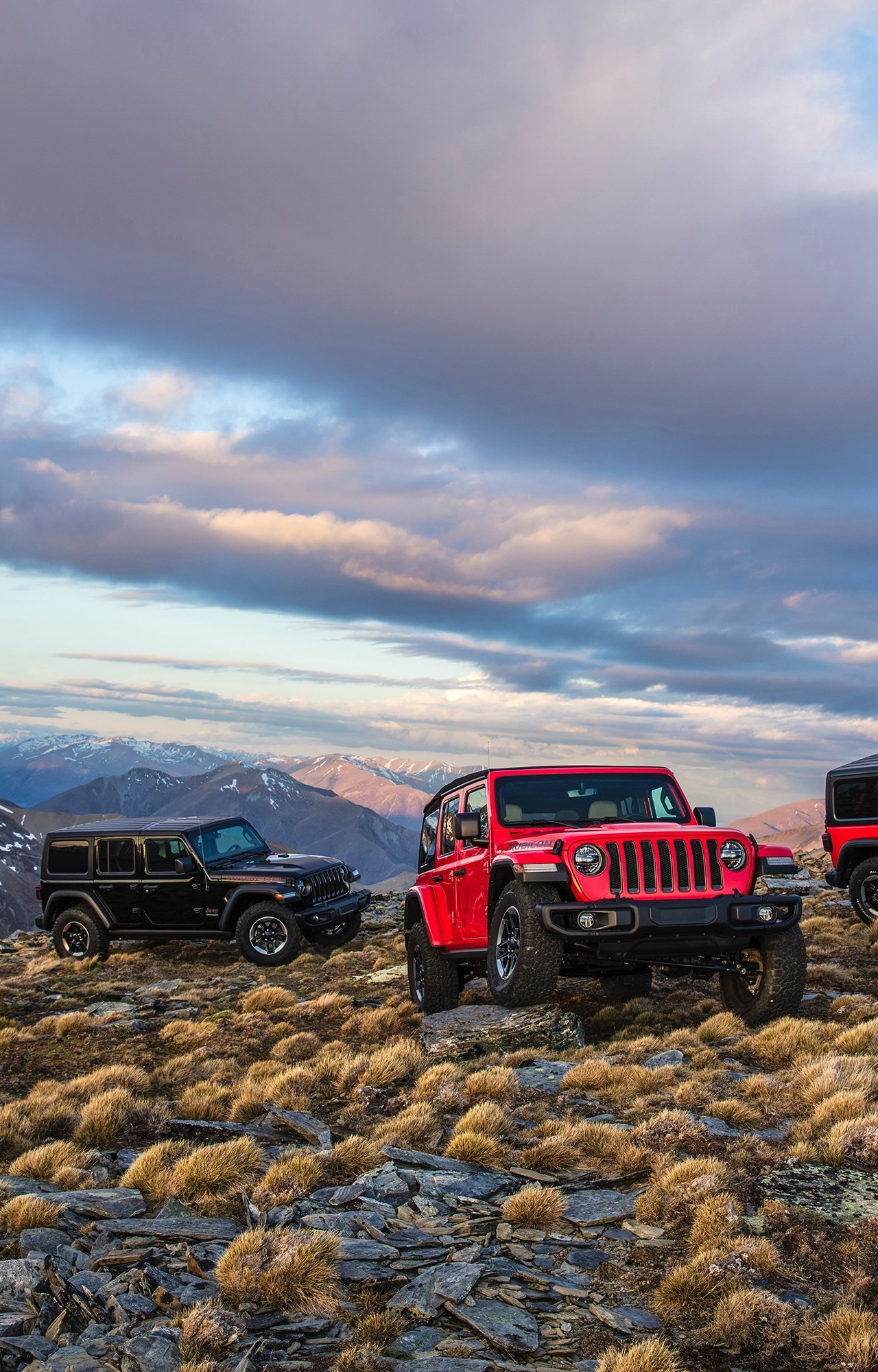 Download 1280x2120 Wallpaper Jeep Wrangler Cars Landscape