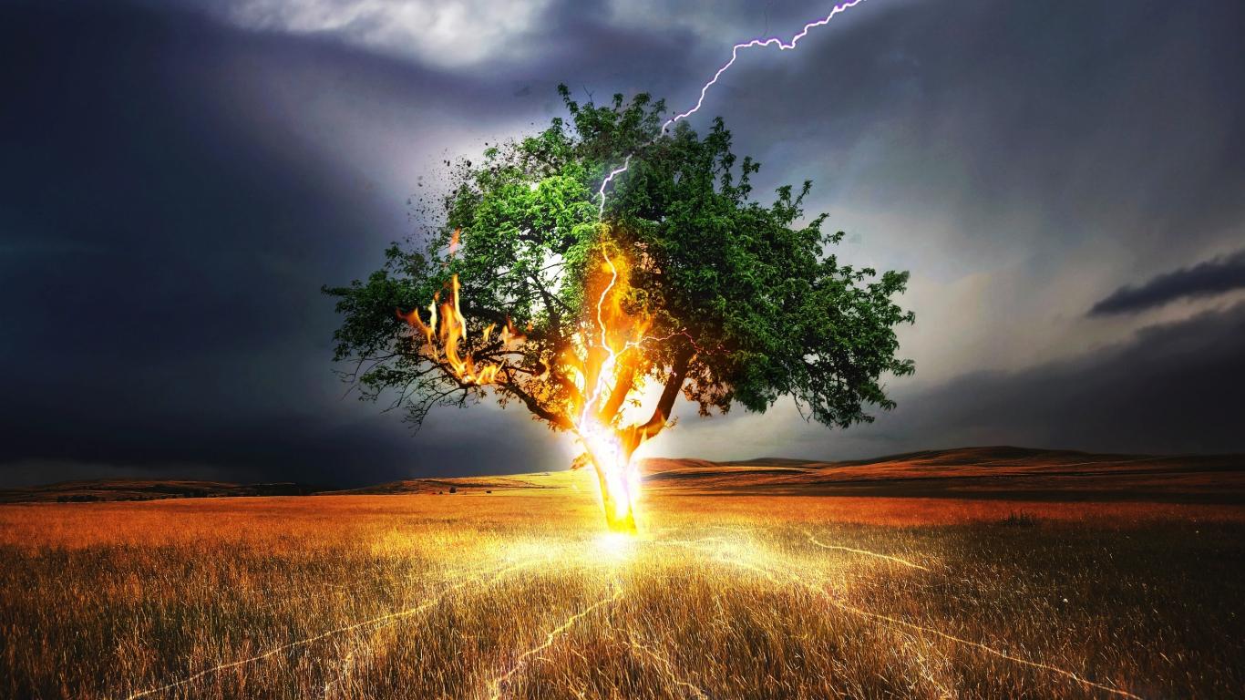 Download 1366x768 wallpaper lightning, flash, tree ...