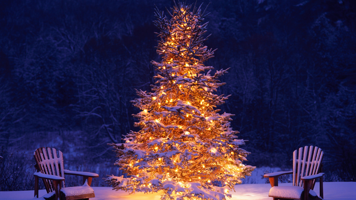 Download 1366x768 Wallpaper Christmas Tree Chairs Winter