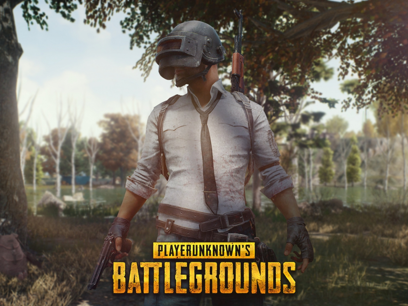 Download 1400x1050 Wallpaper Pubg Forest Theme Mobile Game Helmet