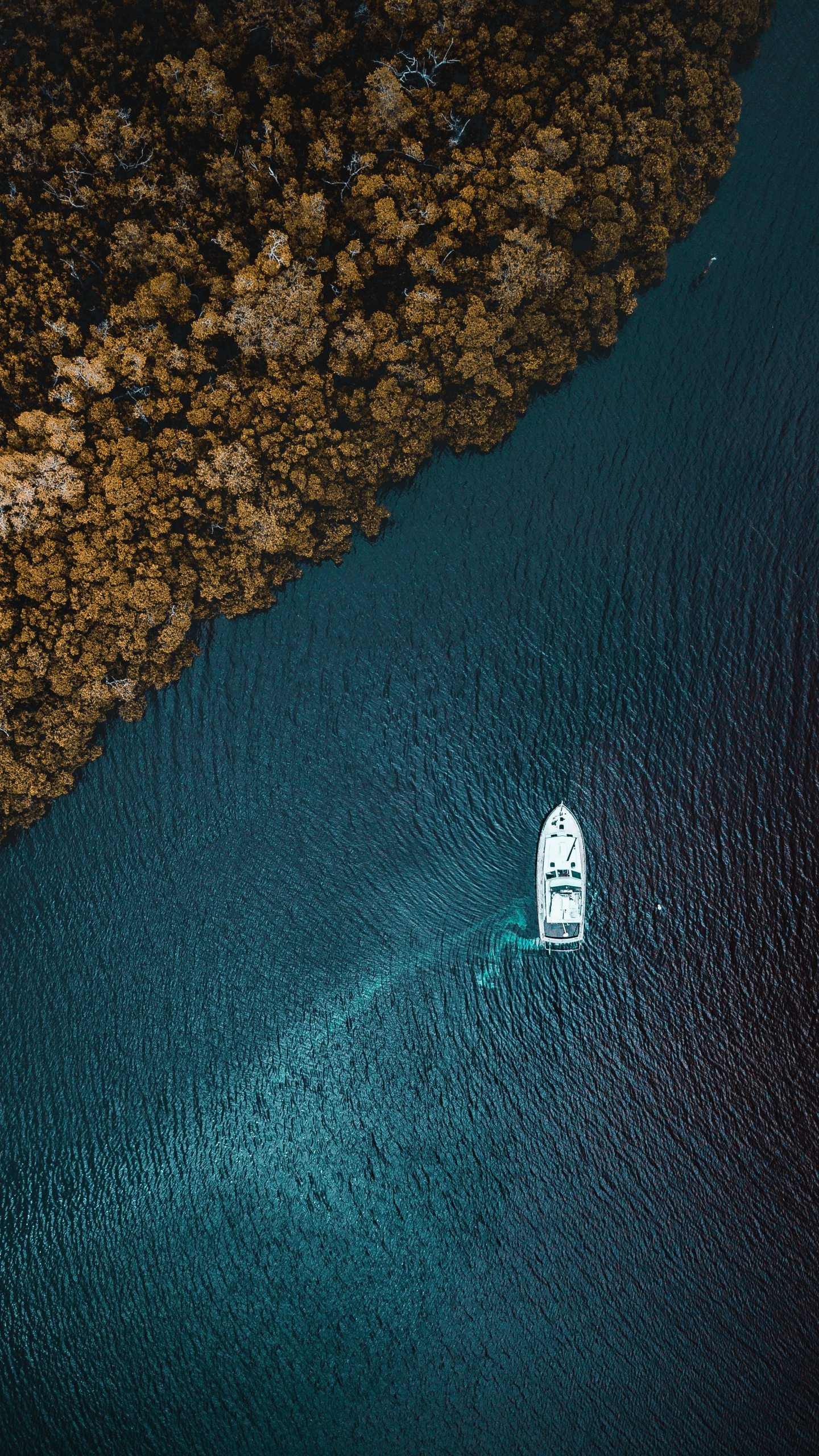 Aerial view, sea, forest, boat, 1440x2560 wallpaper