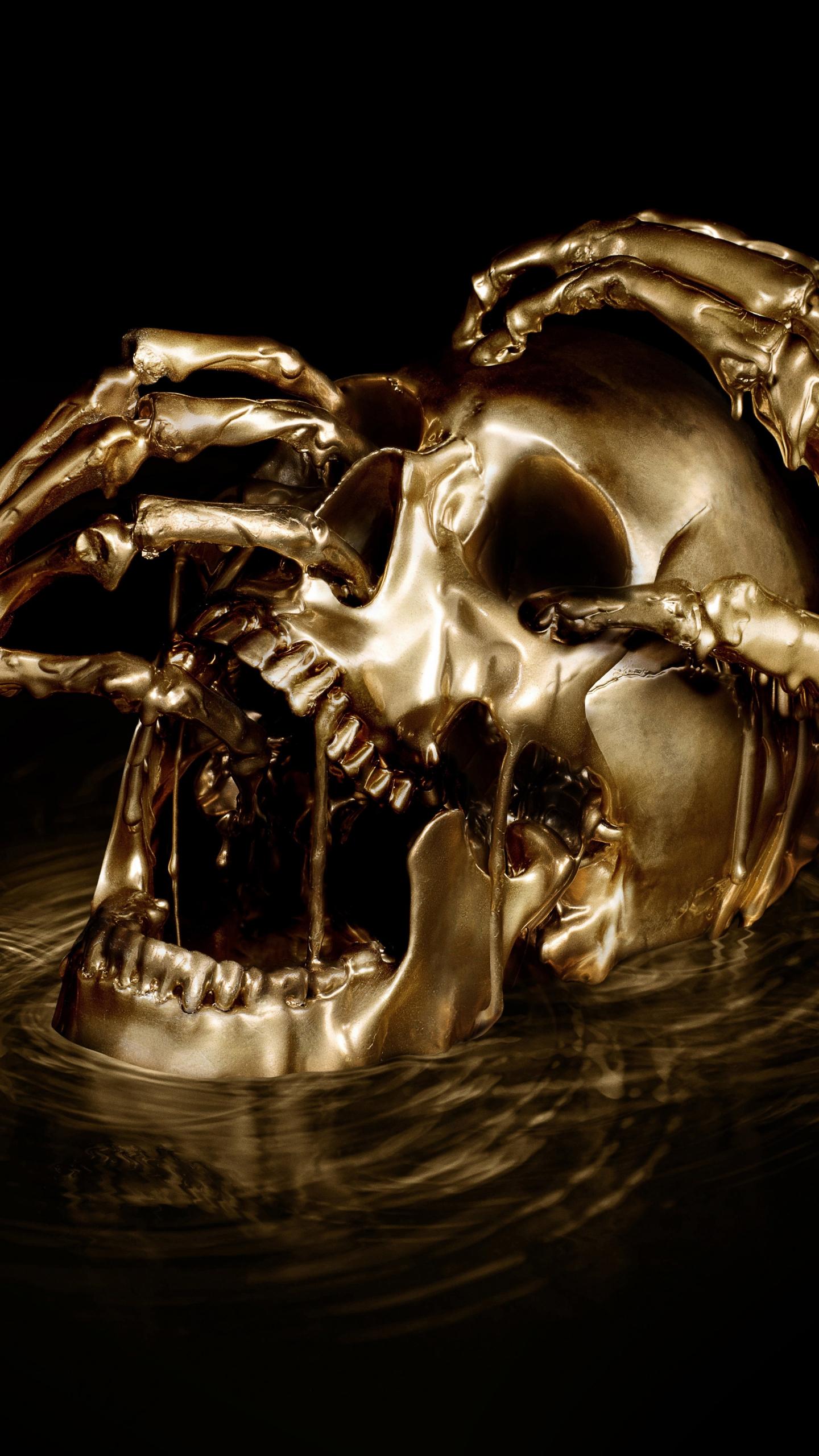 skull horror black sails digital art