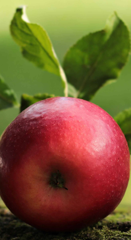 Apple, fruit, close up, 1440x2630 wallpaper
