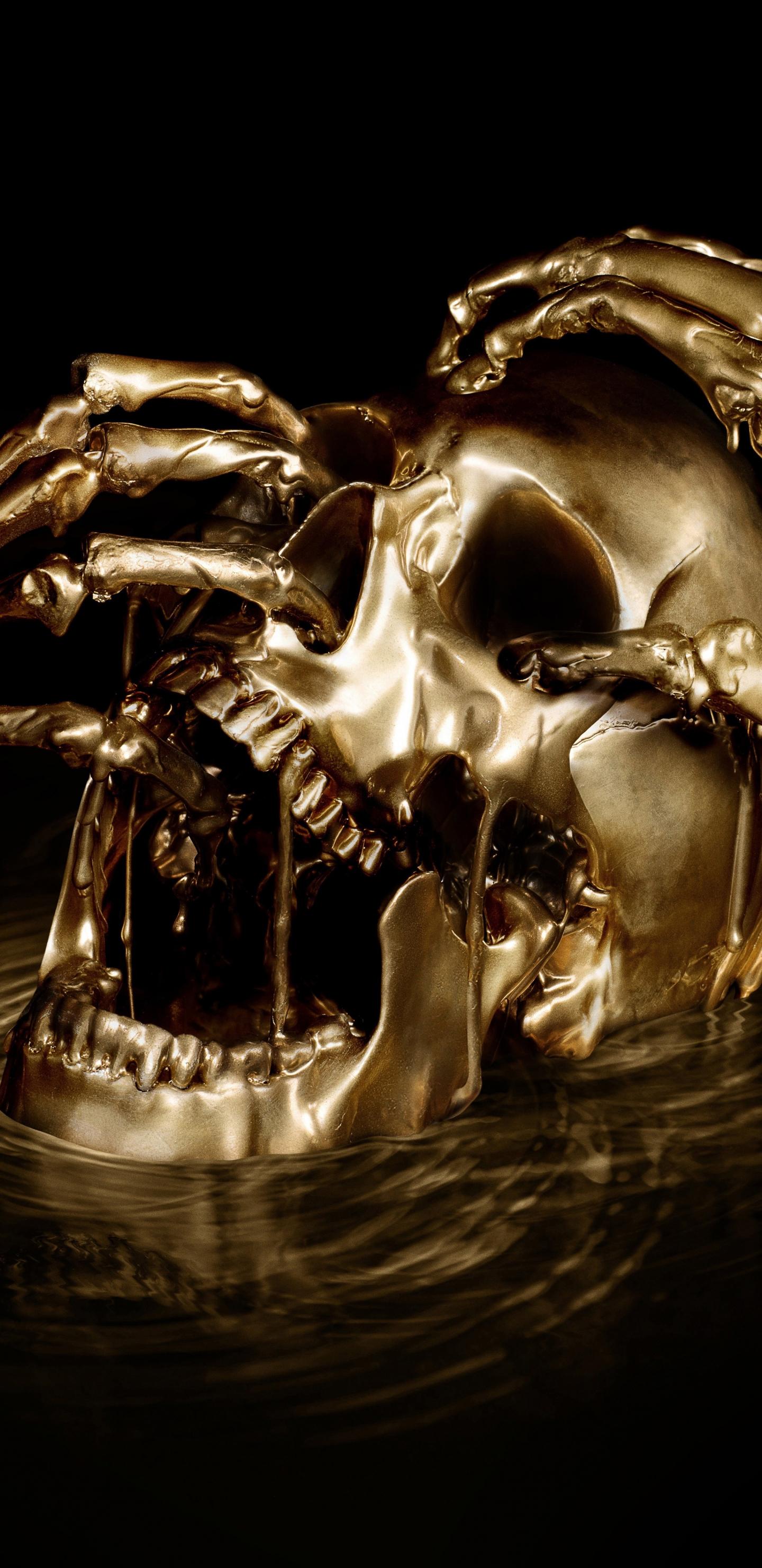 Download 1440x2960 Wallpaper Skull Horror Black Sails