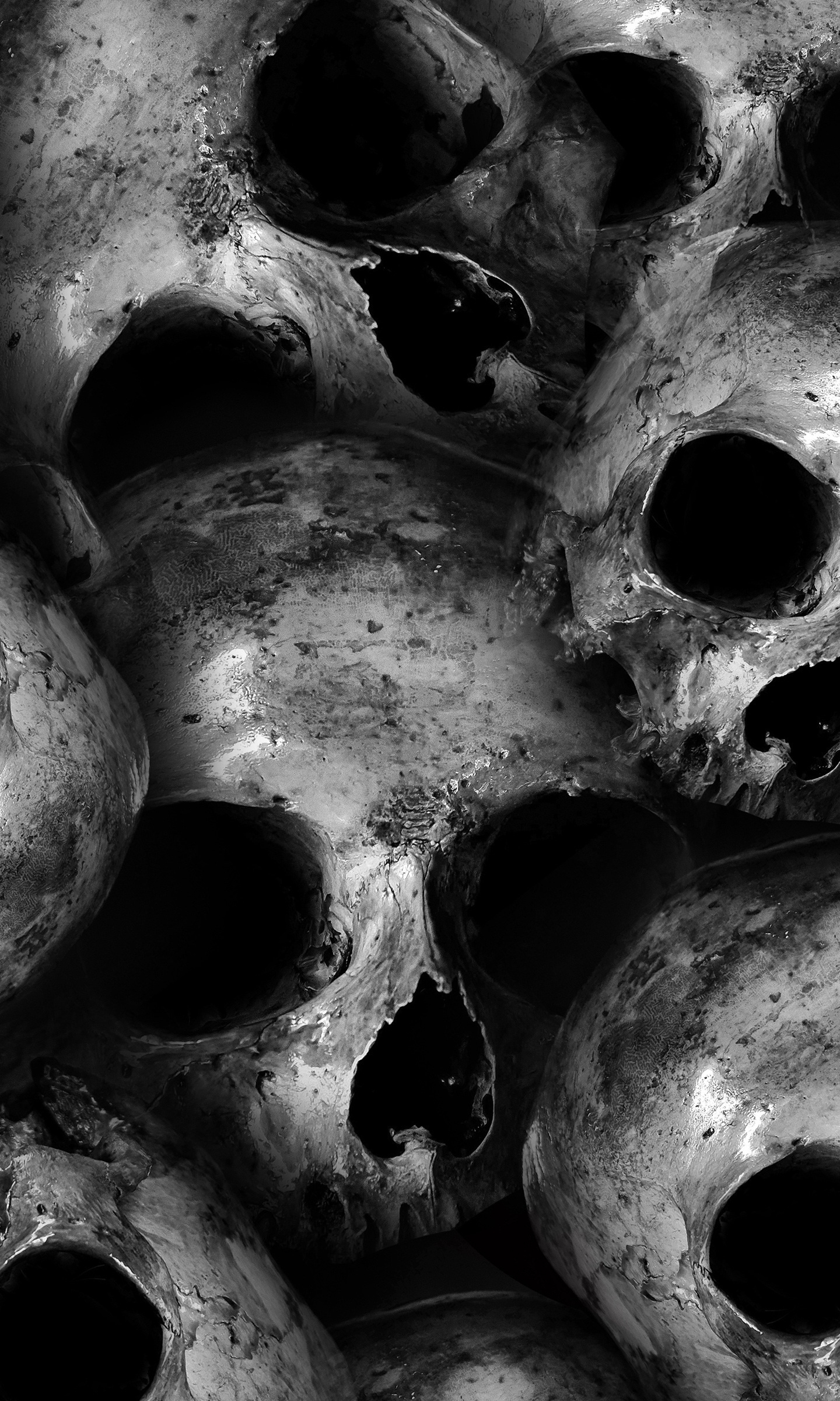 Download 1440x2960 Wallpaper Scary Skulls Dark Samsung