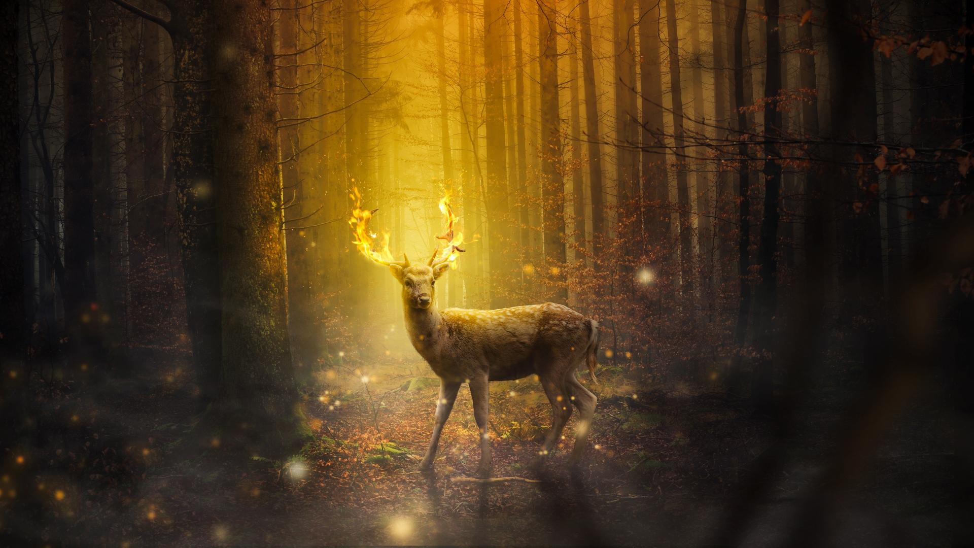 Download 1920x1080 wallpaper dear, forest, digital art, full hd ...