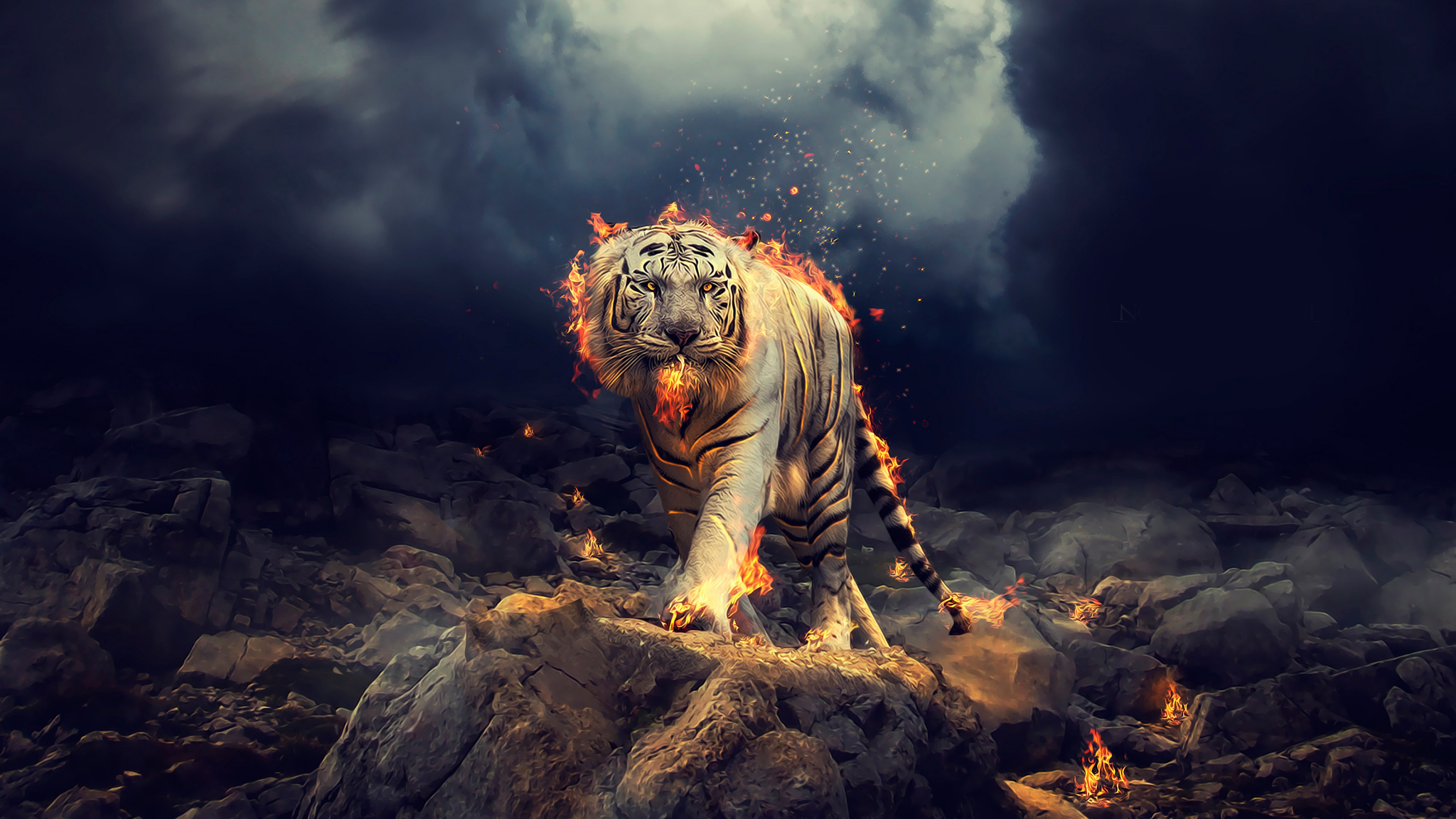 Download 2048x1152 Wallpaper Angry Raging White Tiger
