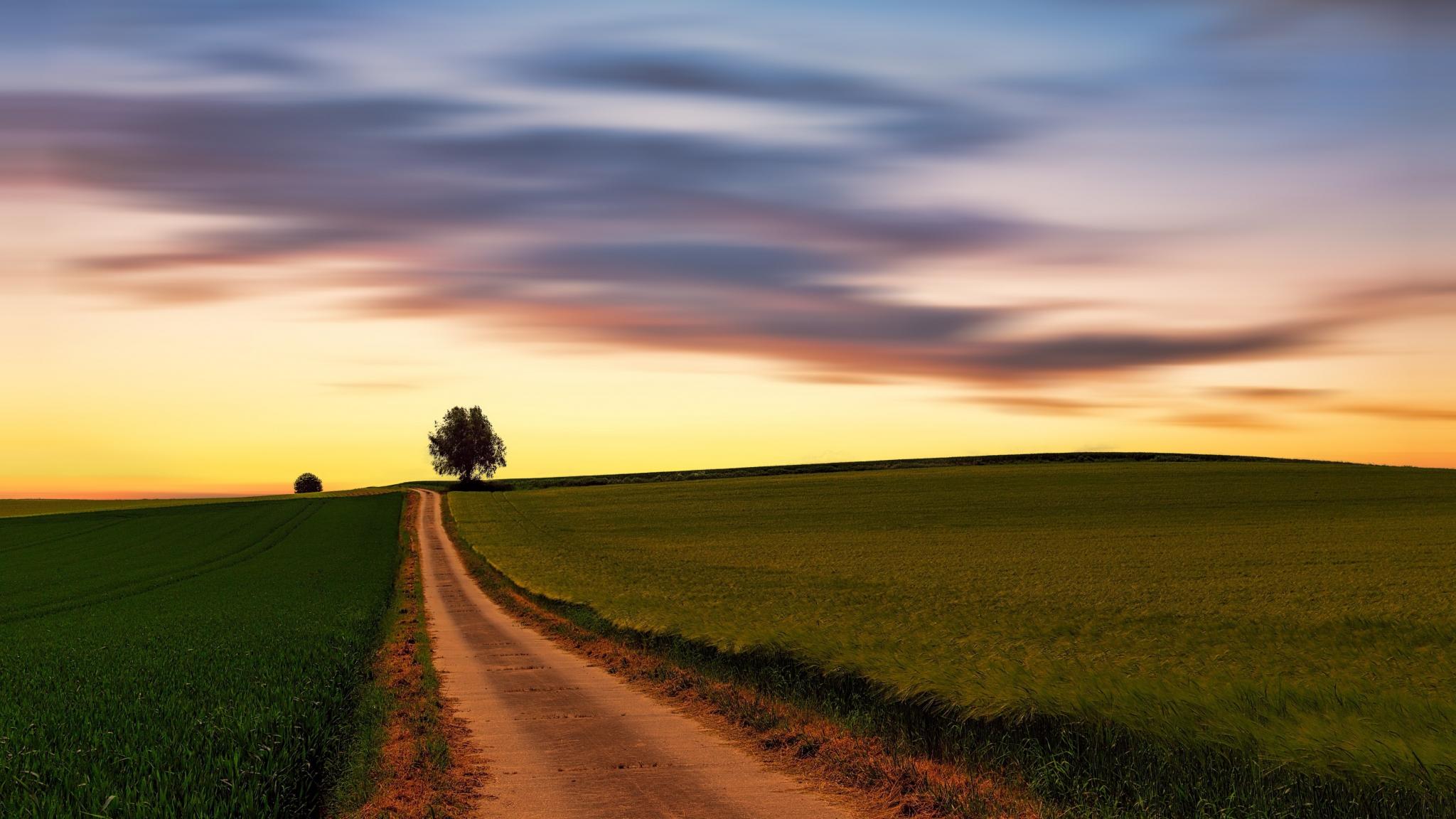 Sunset Skyline Clean Sky Wheat Farm Landscape 2048x1152 Wallpaper