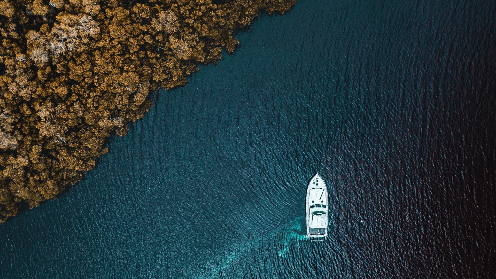 Aerial view, sea, forest, boat, 2048x1152 wallpaper