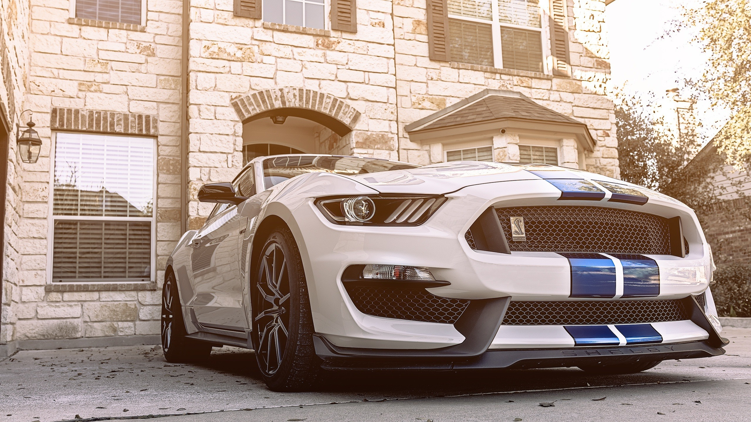 Download 2560x1440 Wallpaper 2018 Ford Mustang Shelby Gt350 Sports Car Dual Wide Widescreen 16 9 Widescreen 2560x1440 Hd Image Background 2548