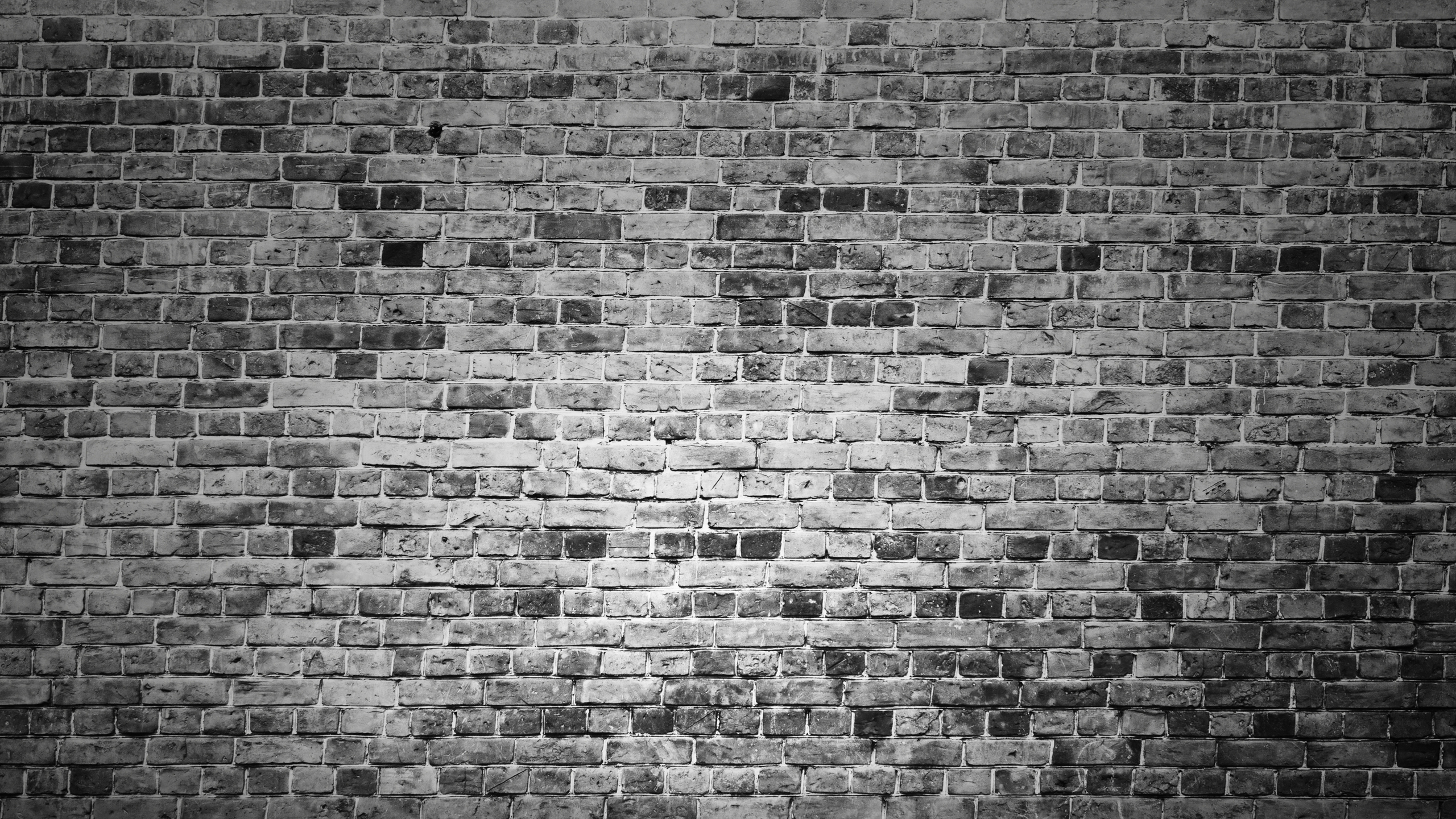 Download 2560x1440 wallpaper brick wall, black and white ...