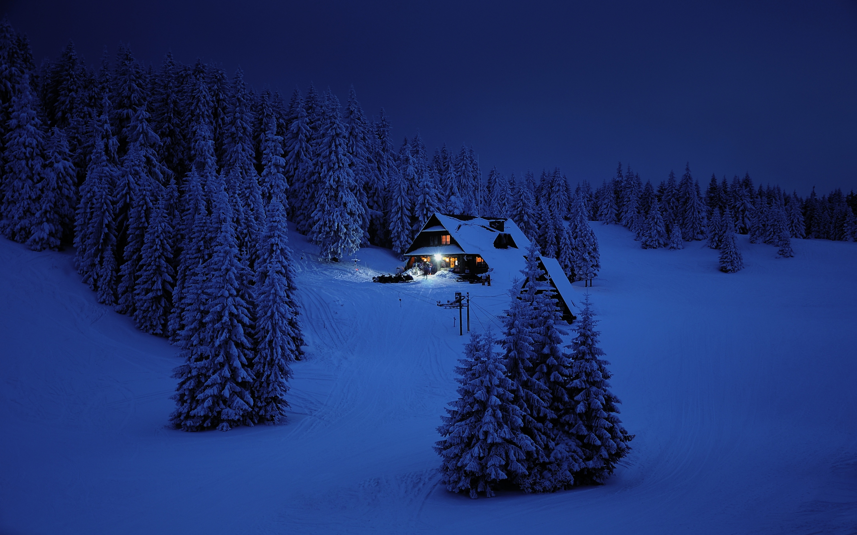 Download 2880x1800 Wallpaper House Night Winter Trees Snow Layer Nature Mac Pro Retaia Image Background 7241