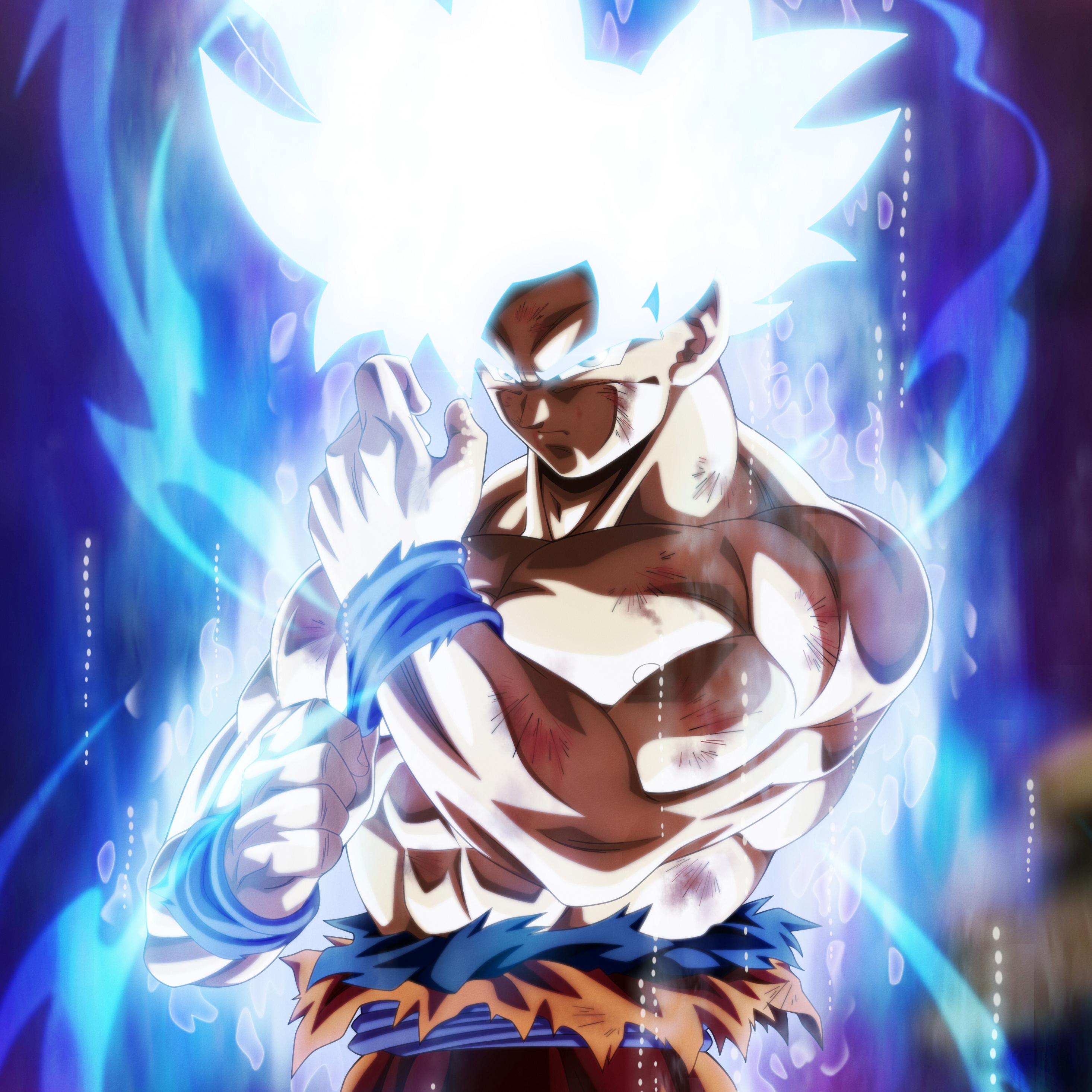 Dragon Ball Super Christmas Wallpaper: Download 2932x2932 Wallpaper Goku, Dragon Ball Super, Fan