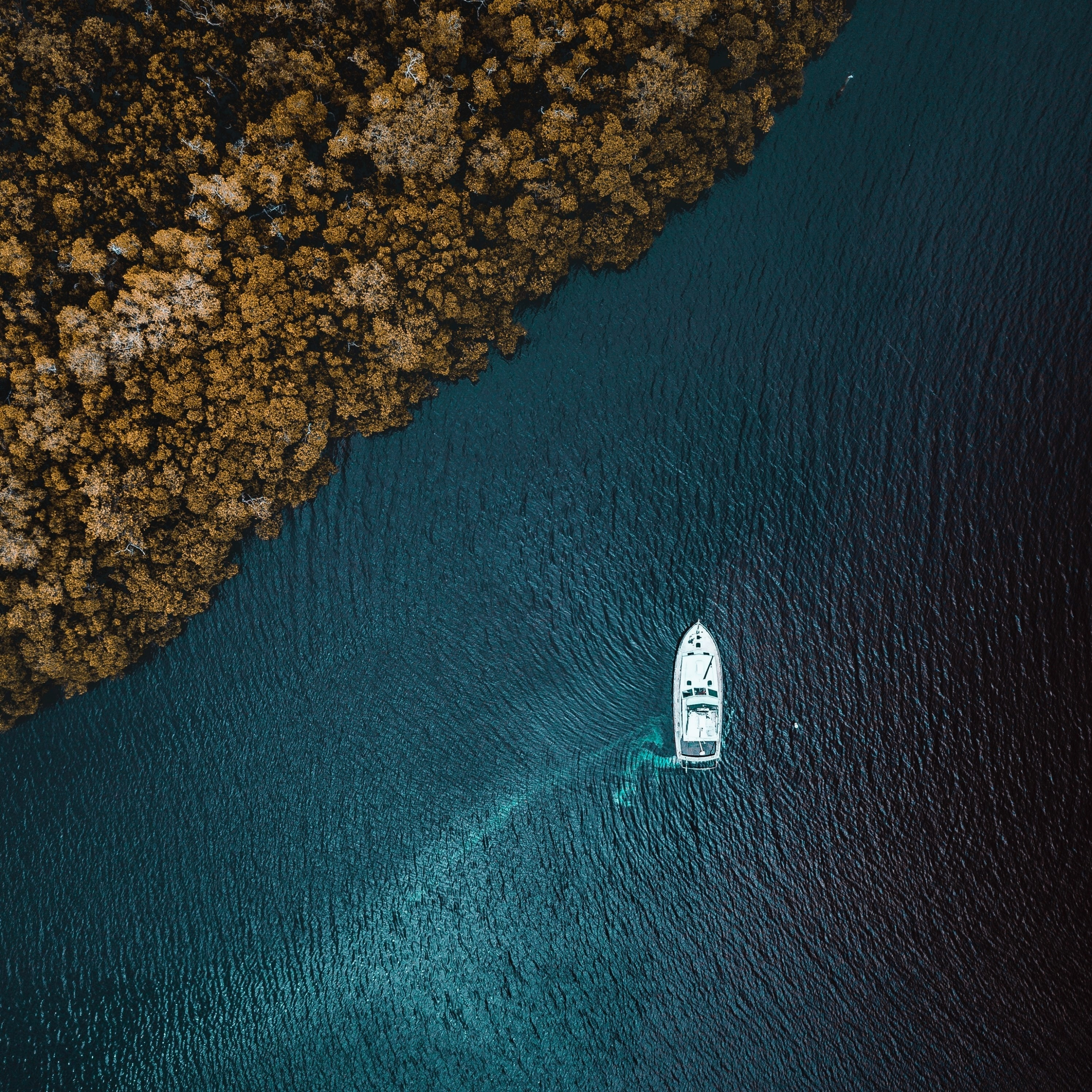 Aerial view, sea, forest, boat, 2932x2932 wallpaper