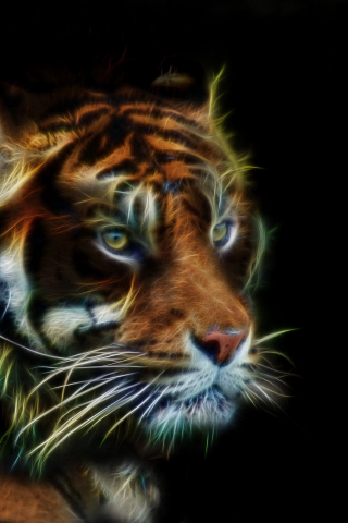 Download 240x320 Wallpaper Tiger Muzzle Predator Art Old Mobile