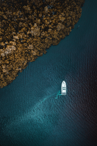 Aerial view, sea, forest, boat, 320x480 wallpaper