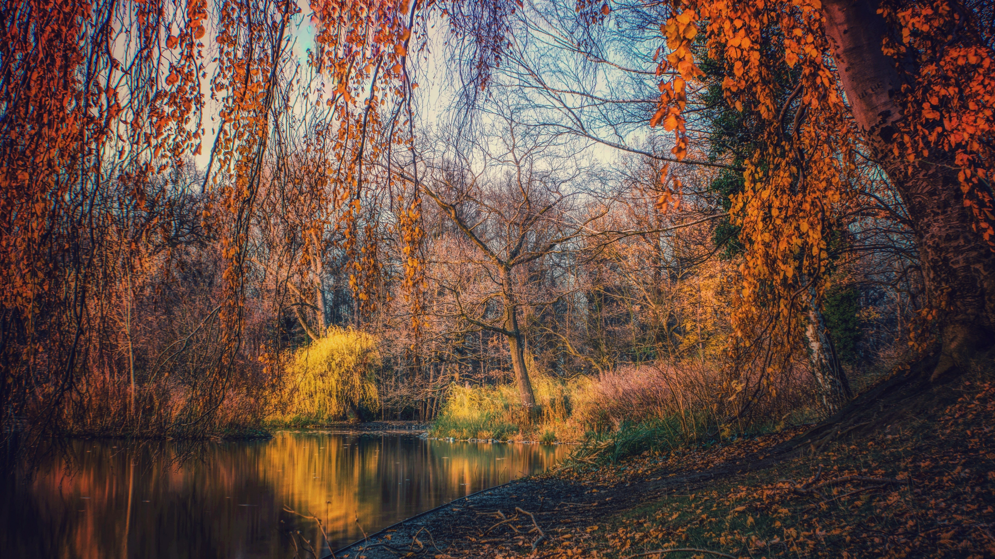 Download 3840x2160 wallpaper lake, nature, tree, autumn ...