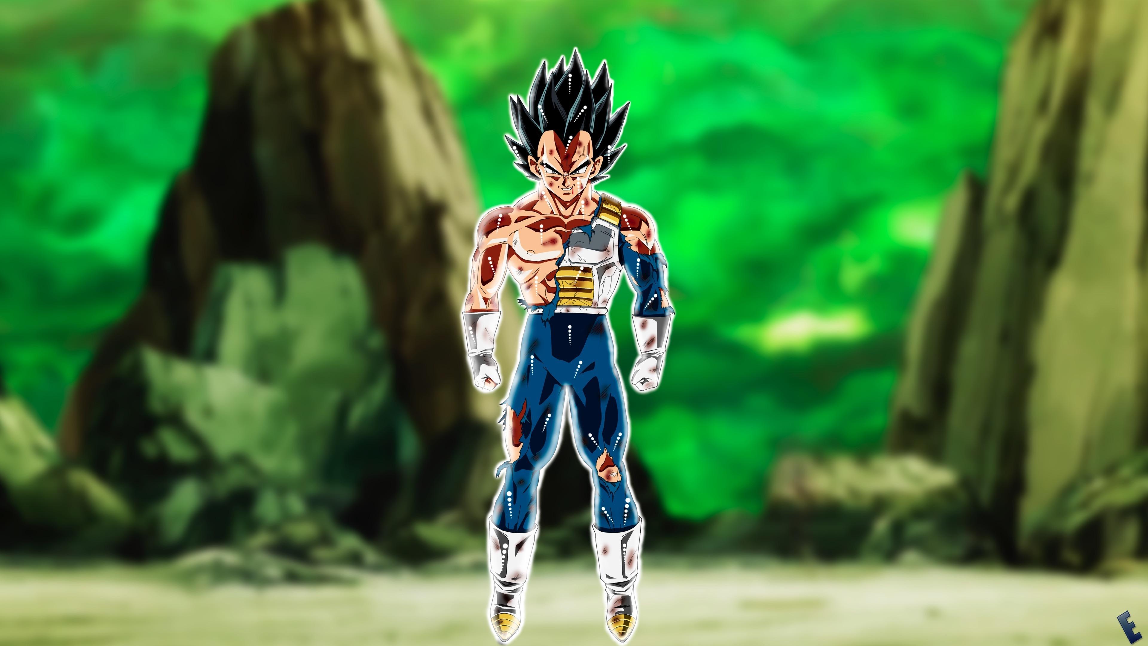 Download 3840x2400 Wallpaper Vegeta Dragon Ball Anime Boy 4k Ultra Hd 16 10 Widescreen 3840x2400 Hd Image Background 964