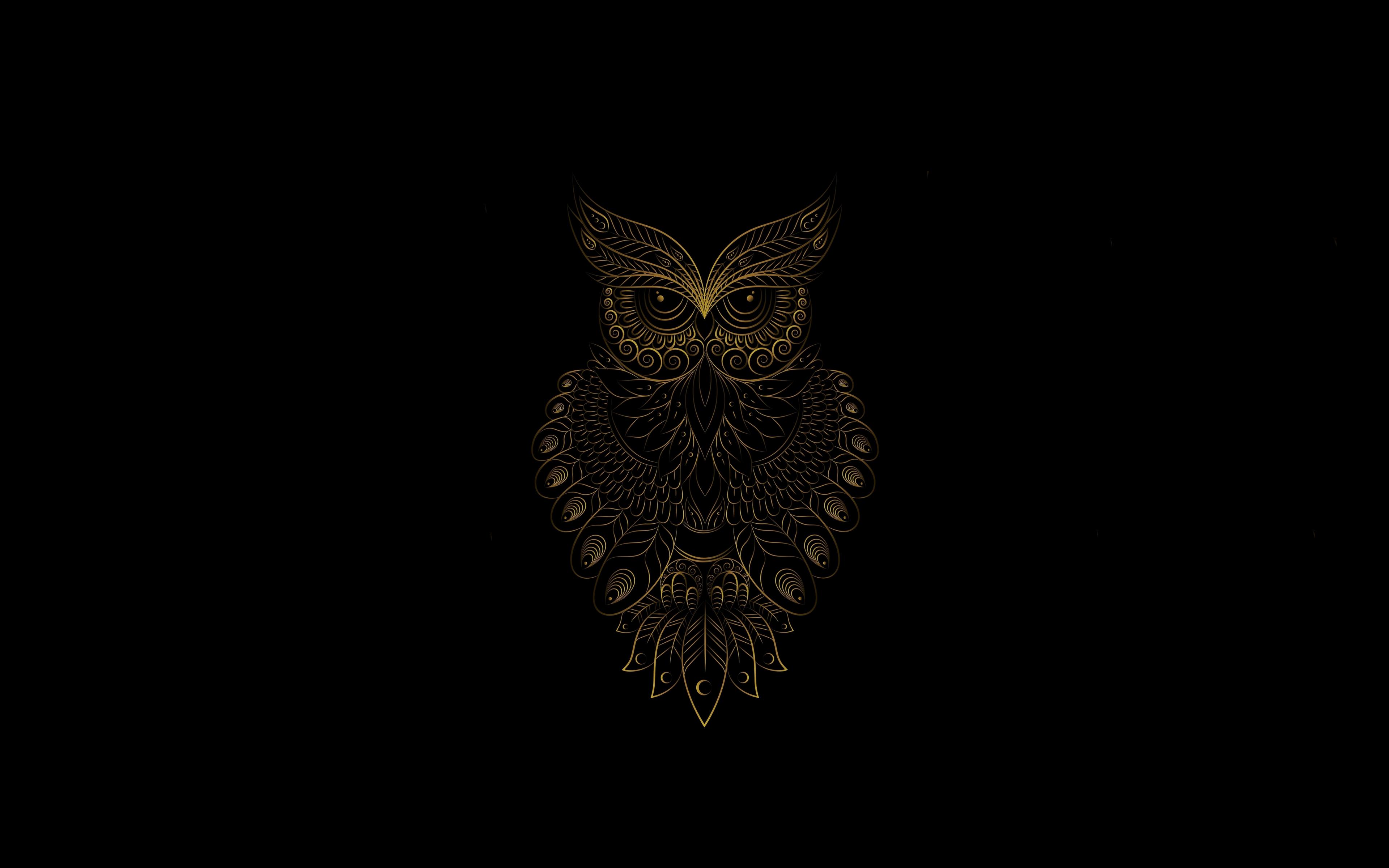 Download 3840x2400 Wallpaper Golden Owl Bird Pattern Art 4k Ultra Hd 16 10 Widescreen 3840x2400 Hd Image Background 24659
