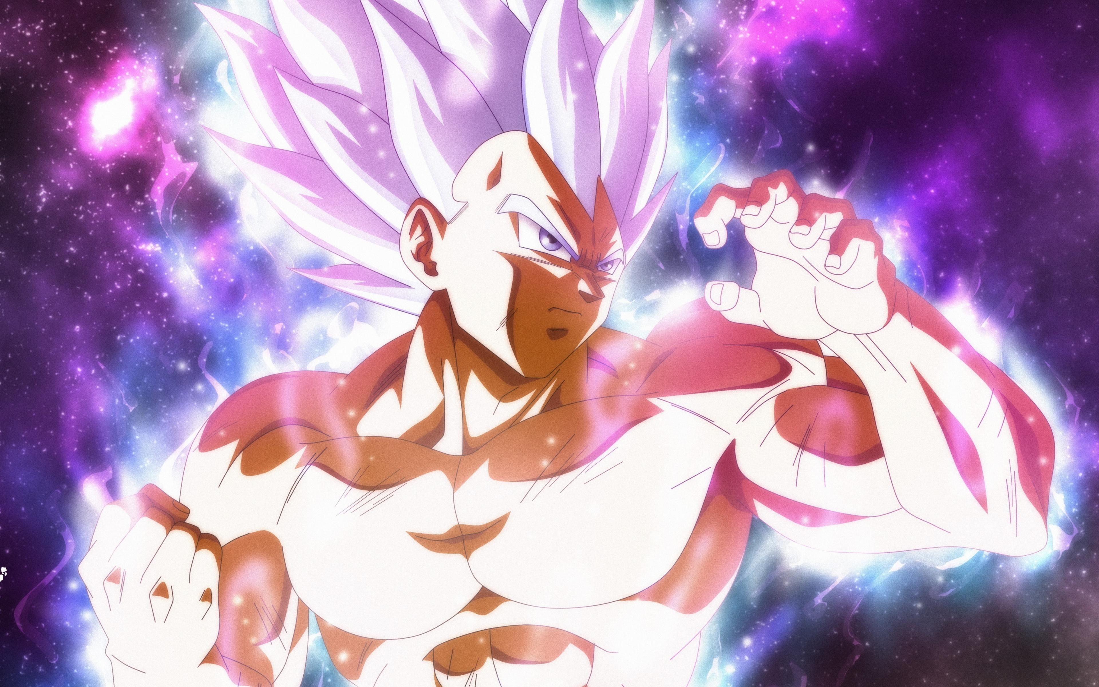 Ultra power vegeta anime boy dragon ball super 2018 3840x2400 wallpaper