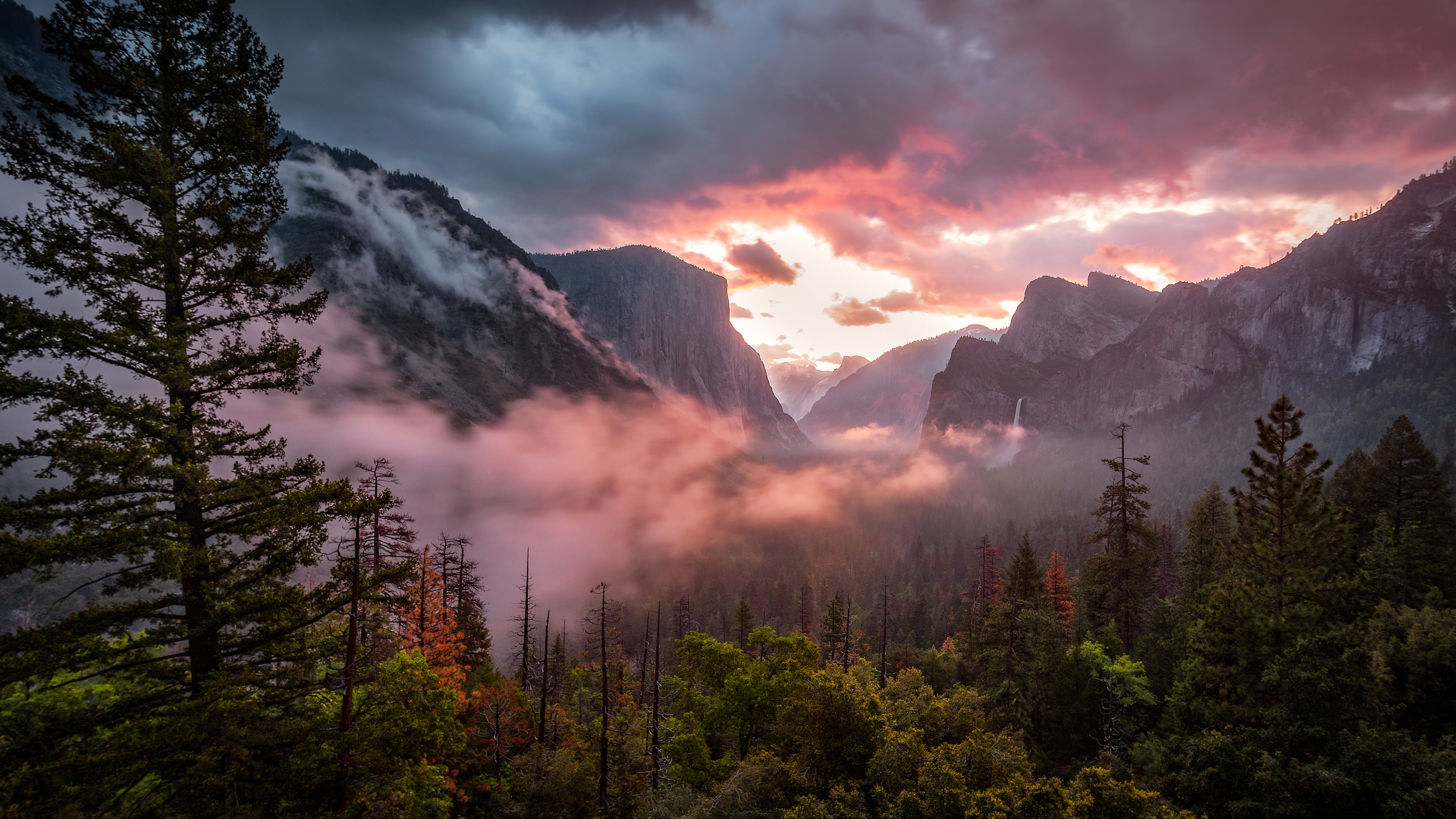 Национальный парк Yosemite смотреть