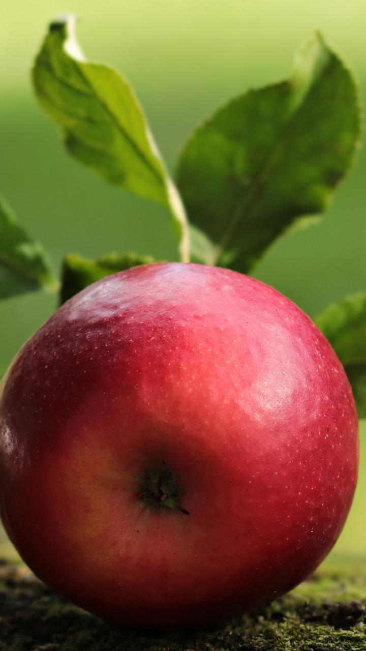 Apple, fruit, close up, 720x1280 wallpaper