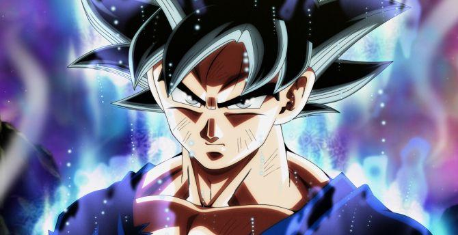 Ultra Instinct Goku Hd Wallpaper: Desktop Wallpaper Ultra Instinct, Dragon Ball Super, Goku