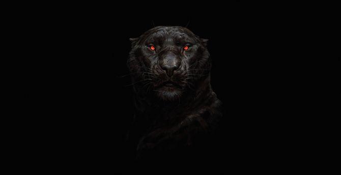 Desktop Wallpaper Tiger Glowing Red Eye Minimal Dark Hd