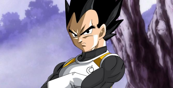 Desktop Wallpaper Dark Hair Dragon Ball Super Angry Vegeta Hd Image Picture Background 05b02f