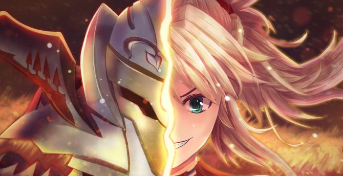 Saber of red fate series face