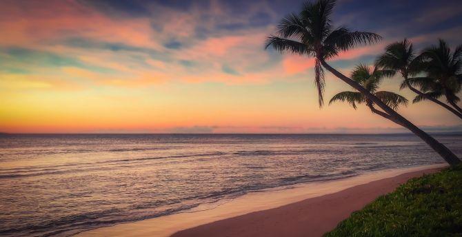 beach sunset ocean coast