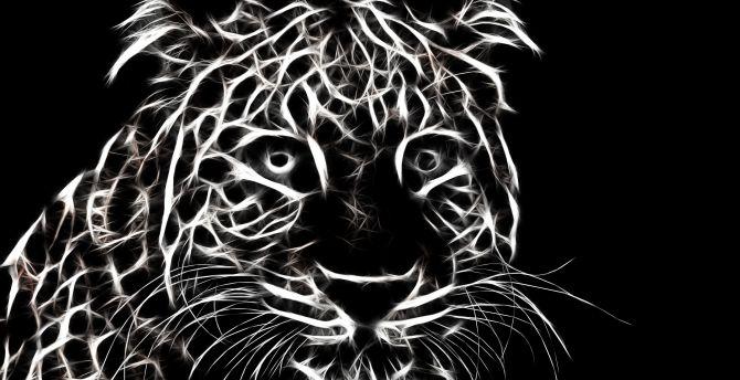 BW, minimal art, leopard, muzzle wallpaper