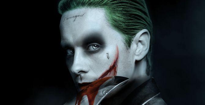 Jared Leto Joker Villain Dc Comics Fan Artwork Wallpaper