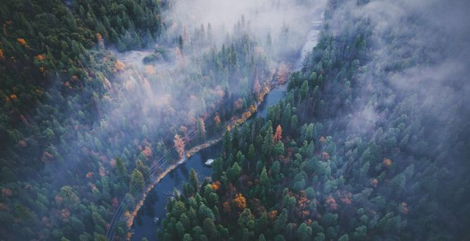 River, aerial view, forest, Yosemite valley wallpaper