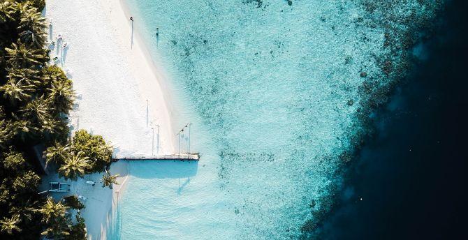 Aerial view, pier, seashore, beach wallpaper