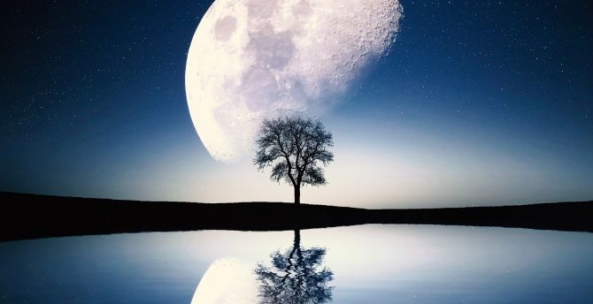 Image result for moon reflection images