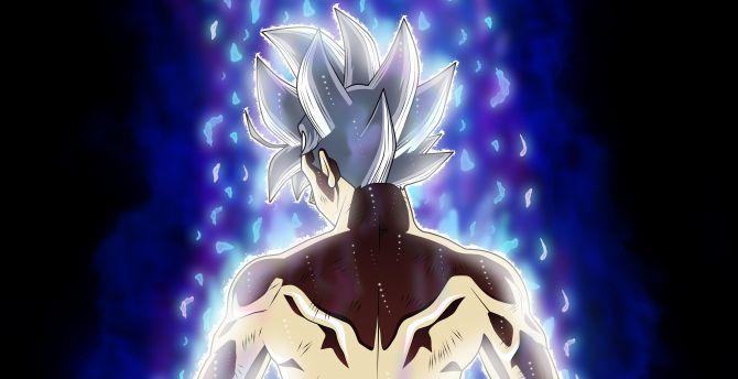 Desktop Wallpaper Goku Back Dragon Ball Super Hd Image Picture Background 6596c4