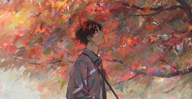 Anime boy, autumn, tree, artwork wallpaper