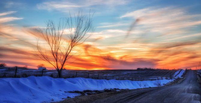 Desktop Wallpaper Skyline Sunset Tree Winter Road Hd Image