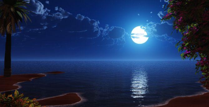 Desktop Wallpaper Tropical Beach Coast Full Moon Night
