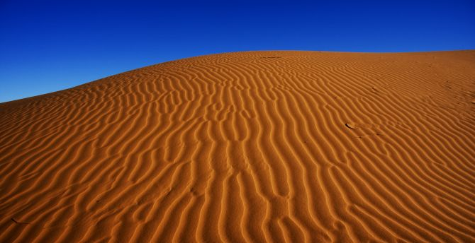 Desert, nature, sand, dunes, blue sky wallpaper
