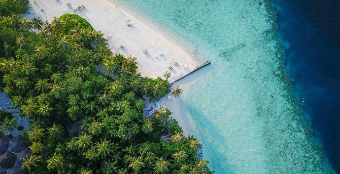 Maldives, island, tropical, aerial view, beach wallpaper