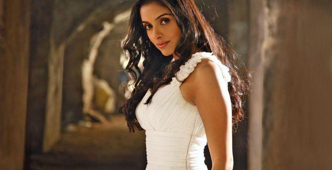 Actress, Asin Thottumkal, bollywood wallpaper