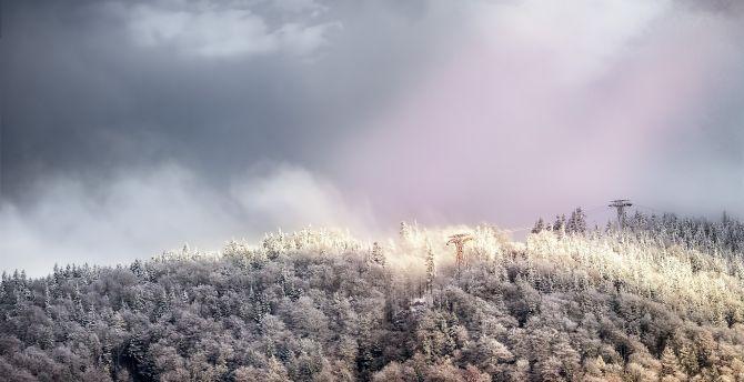 Autumn forest cloudy sky