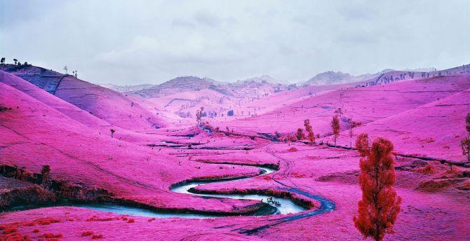 River, valley, pink blossom, landscape wallpaper