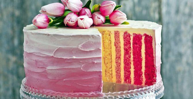 Colorful cake dessert